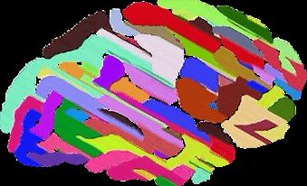 Improve Brain Power - Colourful Brain