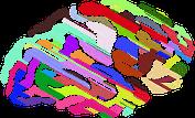 Image of  colourful brain: Improve Brain Power